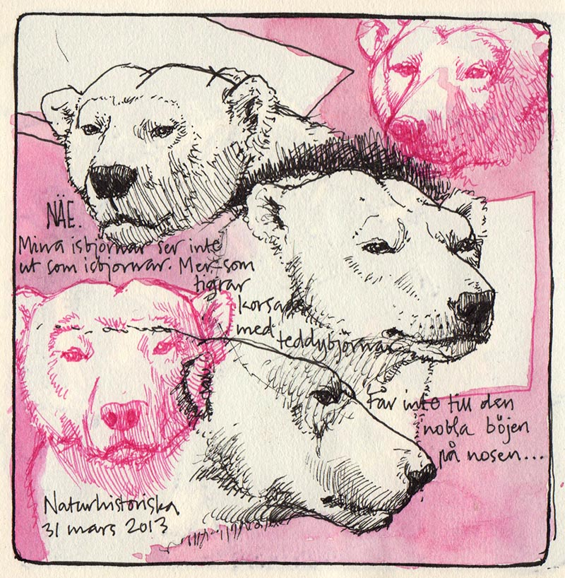 polarbear_trial_naturhist_130331