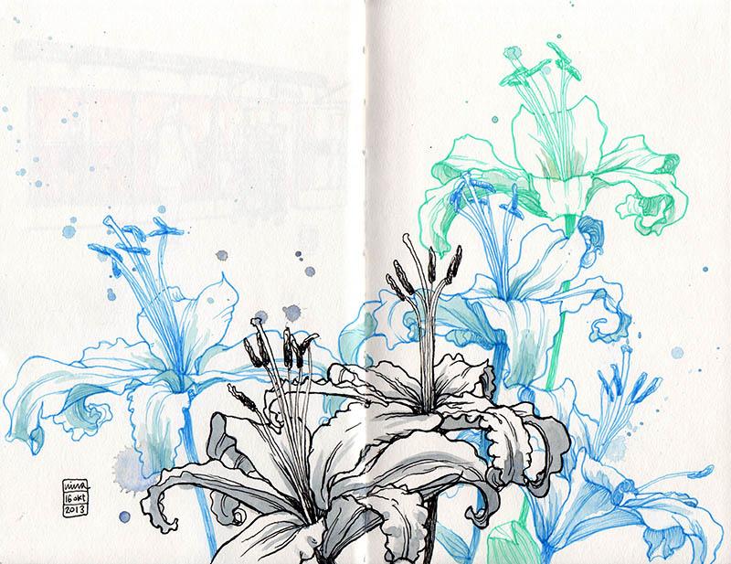 bd_flowers_131016