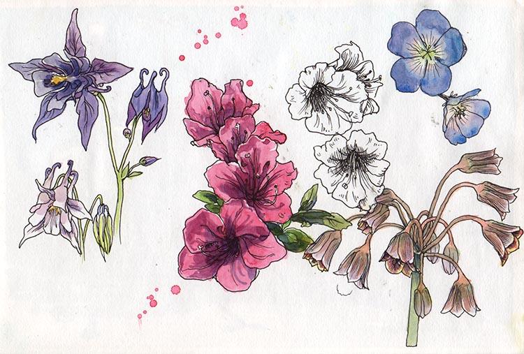 blommor_tanto_hemma_150613